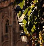 Lantern, Church, Vine Leaves, Light Stock Image