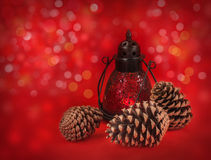 Lantern with cones on a red background Stock Images