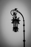 Lantern and dove. Dove sitting on a lamppost. black and white photo Stock Image
