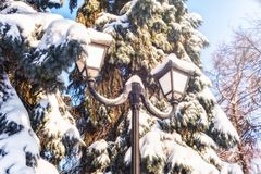 Lantern and fir trees in winter park covered with a thick layer of snow stock image