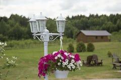Lantern and flower pot Stock Photos