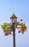Lantern and flowers on it Royalty Free Stock Photo