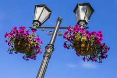 Lantern in a garden decorated with flowers Royalty Free Stock Image