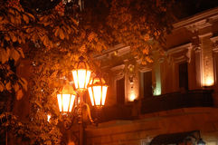 The lantern. Glowing in the branches of chestnut tree at night Royalty Free Stock Images