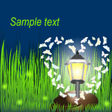 Lantern on grass with butterflies and  fireflies. Invitation card for wedding, date, birthday, tea or garden party Royalty Free Stock Images