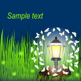 Lantern on grass with butterflies and  fireflies. Invitation card for wedding, date, birthday, tea or garden party. Isolated Royalty Free Stock Photo