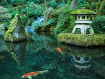 A Lantern and Koi in the Portland Japanese Garden Stock Images