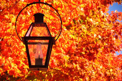 Lantern lamp on natural background autumn red burning leaves Stock Photography