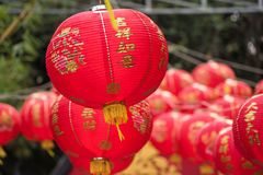 Lantern lamps of 2019 Chinese new year. Red lantern lamps hanging at the garden with green nature bokeh background for decoration during 2019 Chinese New Year stock photo