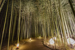 Lantern and light festival in Arashiyama area Royalty Free Stock Photography