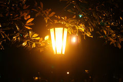 Lantern at night in the park Stock Photos