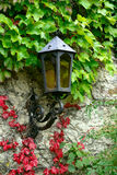 Lantern on the old wal Stock Photography