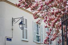 Lantern and old wooden shutters on a building in French village Royalty Free Stock Photography