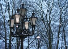 Lantern in the park. Lantern in the snowfall, trees on the background stock photography