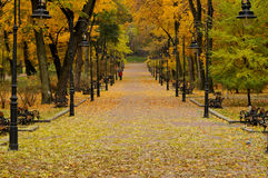 Lantern in the park. Autumn Stock Photos
