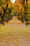 Lantern in the park. Autumn Stock Image