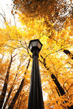 Lantern in the park autumn Royalty Free Stock Images
