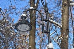 lantern in the park, street lamp, metal lantern, lamppost, lantern in the snow royalty free stock image