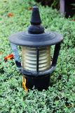 Lantern in the park and trees. Stock Photography