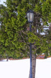 Lantern in the park. Trees on the embankment covered with snow Royalty Free Stock Image