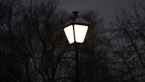 Lantern and snow in the park stock video