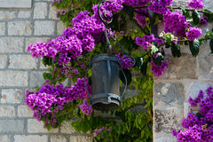 Lantern on the street in old town of Split, Croatia. Royalty Free Stock Photography