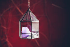 Lantern with tealight outside on winter's day Stock Photography