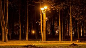 Lantern in Victory park, autumn. Time lapse shot in motion stock footage