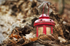 Lantern. Wood forest park garden autum walking counryside day afternoon root one close-up Lantern red leaves foliage Stock Photography