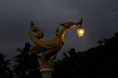 Lanterna asiatica Fotografie Stock