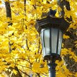 Lanterna in autunno fotografia stock libera da diritti