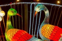 Lanterna chinesa chinesa do pavão do ano novo de ano novo de festival de lanterna Fotografia de Stock