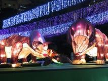 Lanterna chinesa do Triceratops - Autumn Festival meados de Fotografia de Stock