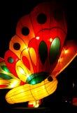 Lanterna da borboleta Fotos de Stock Royalty Free