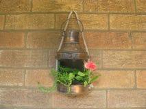 Lanterna da flor Fotos de Stock