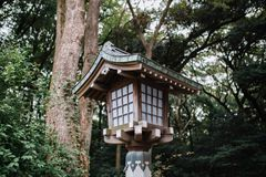 Lanterna de madeira do estilo japonês com as árvores no fundo fotos de stock