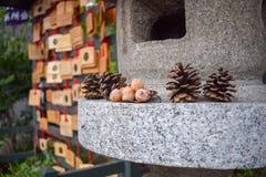 Lanterna de pedra e ofertas de Pinecone imagens de stock