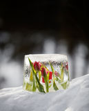 Lanterna del ghiaccio fotografia stock libera da diritti