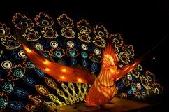 Lanterna del pavone al festival di lanterna Immagine Stock