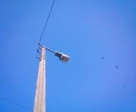 Lanterna della città Fotografia Stock