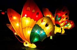 Lanterna della farfalla Fotografie Stock
