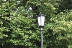 Lanterna della lampada di via su fondo verde fotografia stock libera da diritti