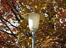 Lanterna della via alle foglie colorate autunno Immagine Stock
