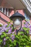 Lanterna della via fra il lillà alla casa Fotografia Stock