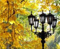 Lanterna della via sui precedenti del fogliame di autunno Fotografia Stock