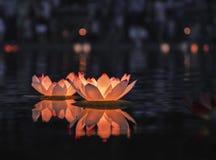 Lanterna di galleggiamento alla notte Immagine Stock