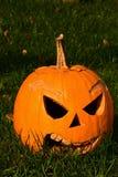Lanterna diabolica sorridente di Halloween Jack o fatta della zucca fuori sgorbiata con i grandi denti scolpiti ed il naso triang Immagine Stock Libera da Diritti