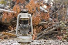 Lanterna do óleo no início de uma sessão de madeira a floresta Imagens de Stock