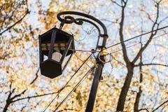 Lanterna do outono fotos de stock