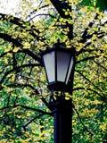 Lanterna em um parque fotografia de stock